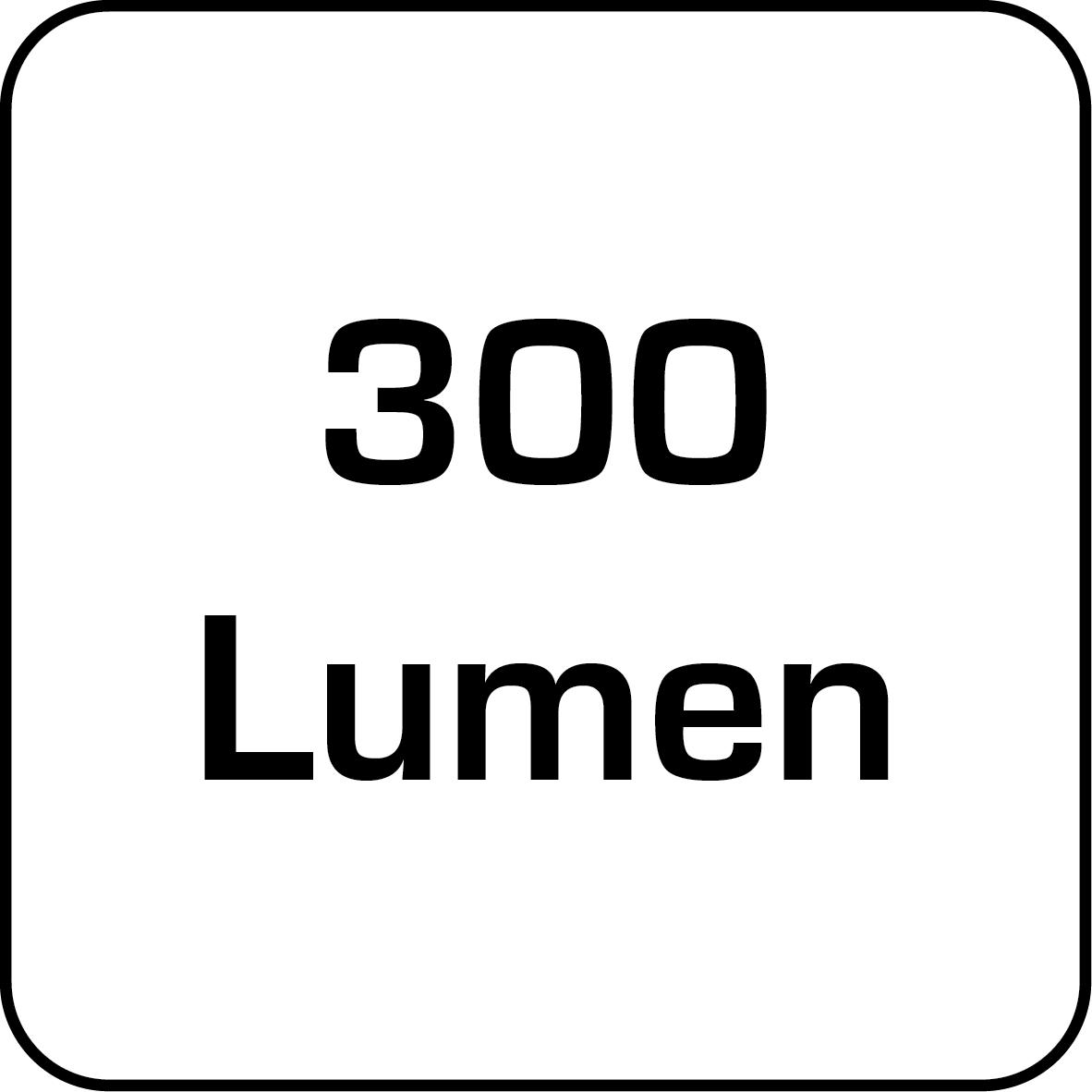 11-300-lumen
